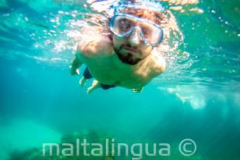 Student se potápí a šnorchluje